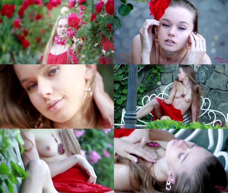 165933119 363 galitsinteens spanish rose - Spanish Rose
