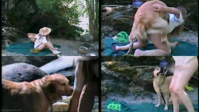 166968323 0472 dgsx dogsex trip in canada - Dogsex Trip In Canada - Dog Bestiality Video