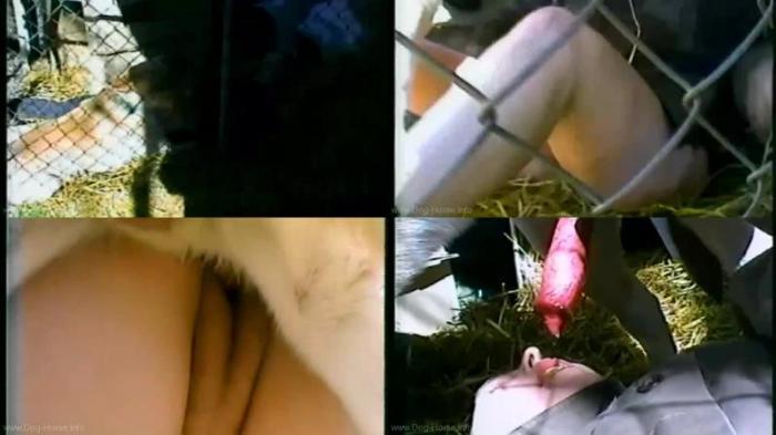 166968506 0486 dgsx pleasure in the pen - Pleasure In The Pen - Dog Bestiality Video